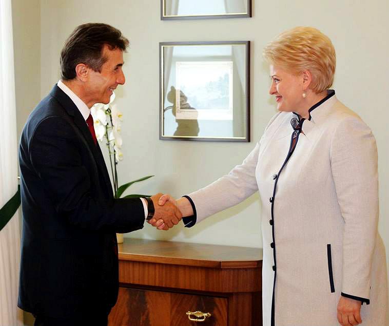 bidzina_ivanishvili_-_Dalia_Grybauskaite_-_2013-07-18